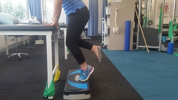 Bent knee calf raise A