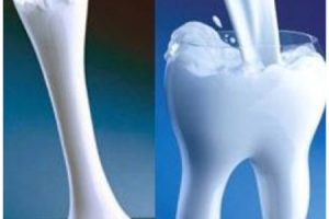 Calcium and osteoporosis